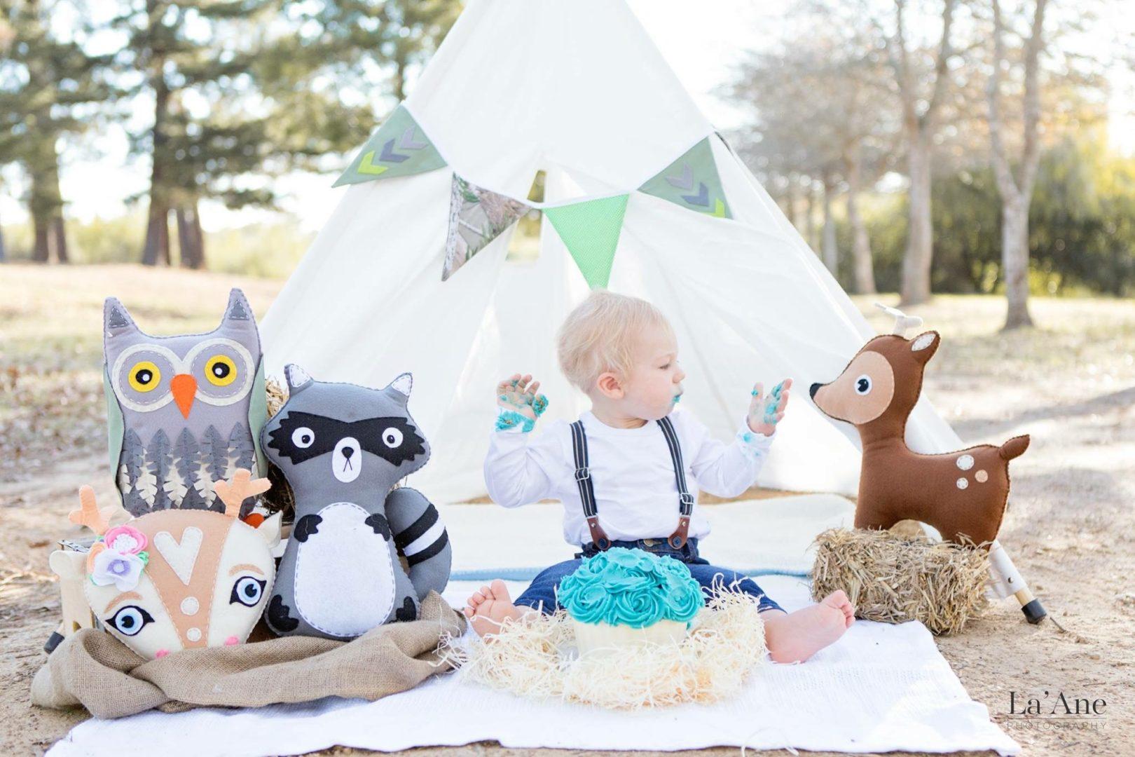 first birthday cake smash photoshoot white play tent