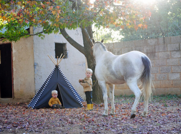 Dark grey teepee play tent under autumn tree with white horse