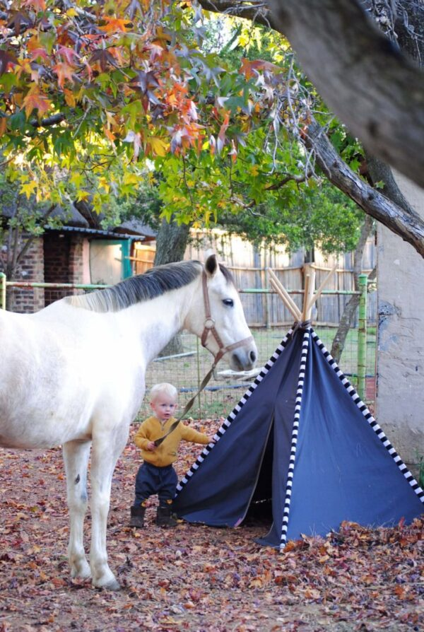 Autumn leaves kids outdoor play tent with white horse